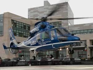 Penn State Hershey Medical Center Life Lion